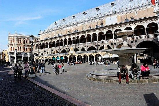 Padua, Vicenza Schilderijen en ...