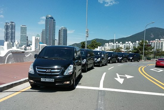 Seoul Private Charter Tour (4 or 8...