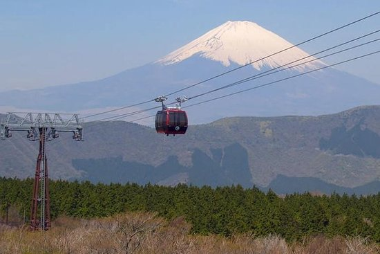Exciting Hakone - One Day Tour from...