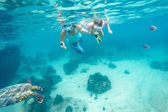 Dimaniyat Island von Muscat