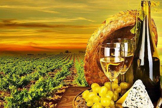 Dagstur fra Beirut - Vinsmagningstur...