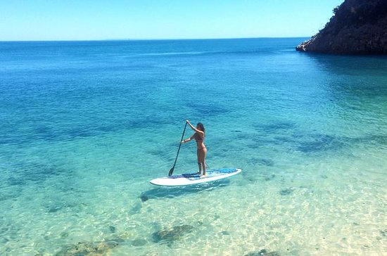 Stand Up Paddle in Marine Sanctuary