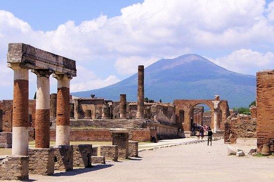 Tour privado de un día a Pompeya y el...