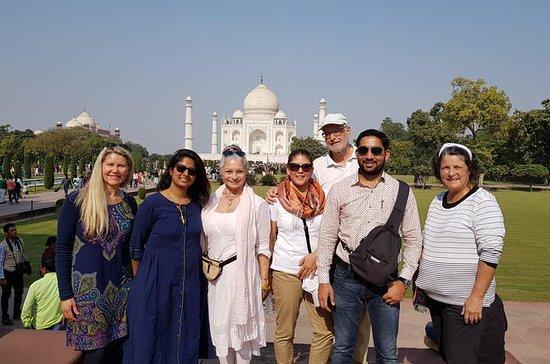 Taj Mahal e Agra City Day Tours para...