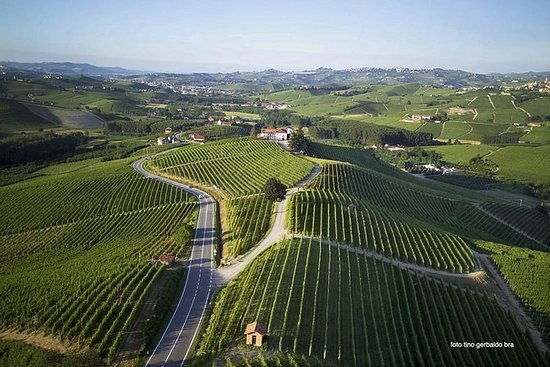 Langhe & Roero UNESCO wine day tour...