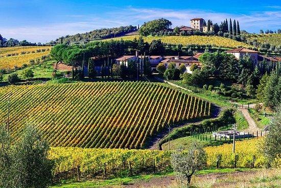 Privat vinopplevelse i Chianti-åsene...