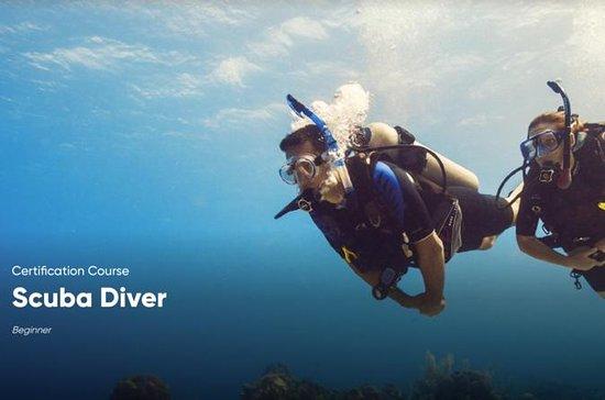 PADI Scuba Diver Certification i ...
