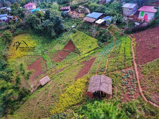 Overview of Kalaw Farm House