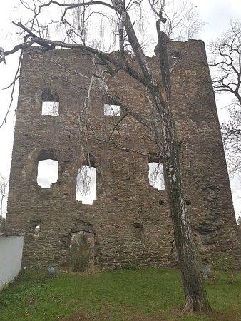 Zrícenina hradu Řícany