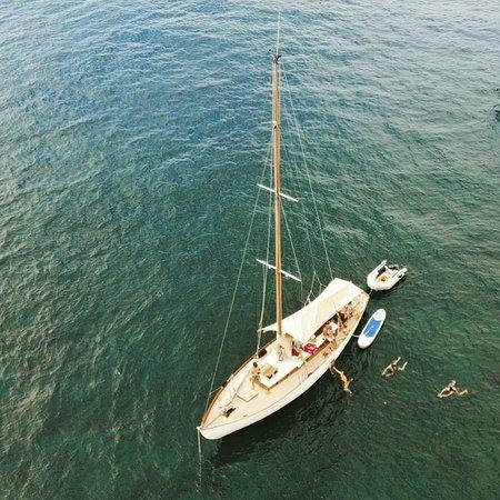 SailCannes