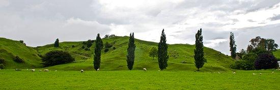 Rotorua District, نيوزيلندا: Thermal woonder land highway