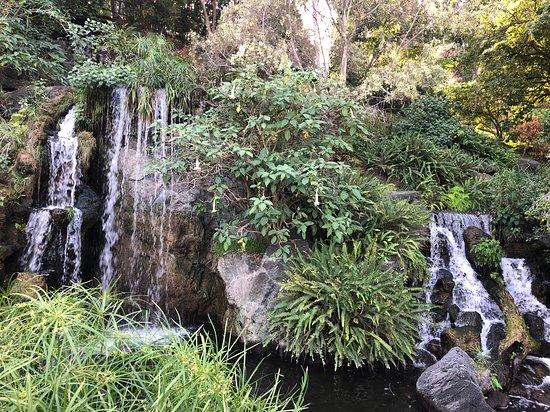 洛杉矶县立植物园