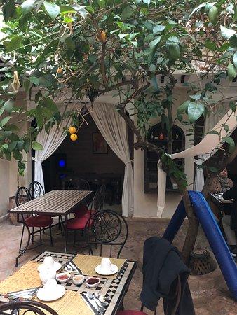 Riad l'Oiseau du Paradis: Breakfast under the orange tree