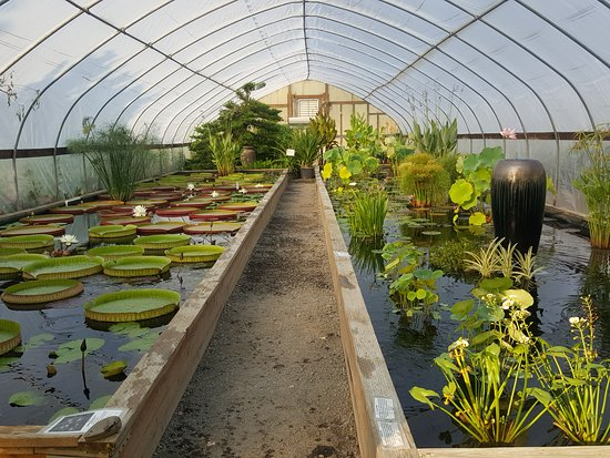 Tualatin, OR : A full view of the tropical greenhouse