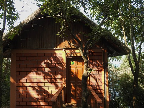 Bhadra, Indien: Our room..Owlet.