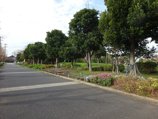 Benten Fureai no Mori Park