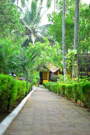 Savithri Inn Bamboo cottage : Savithri inn COTTAGES varkala beach