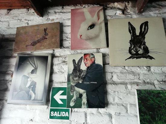 Foto de Cafe Tostado