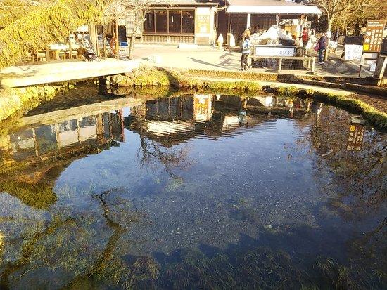 Waku Pond