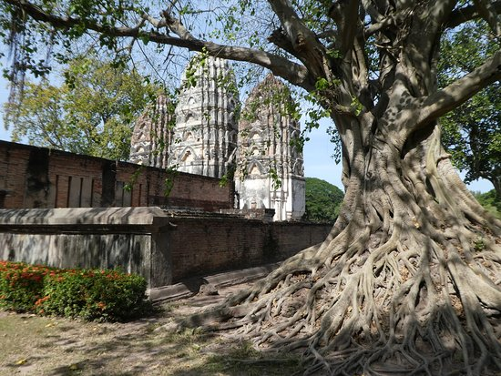 Sukhothai Historical Park: Een van de prachtige tempels omringd door majestueuze bomen