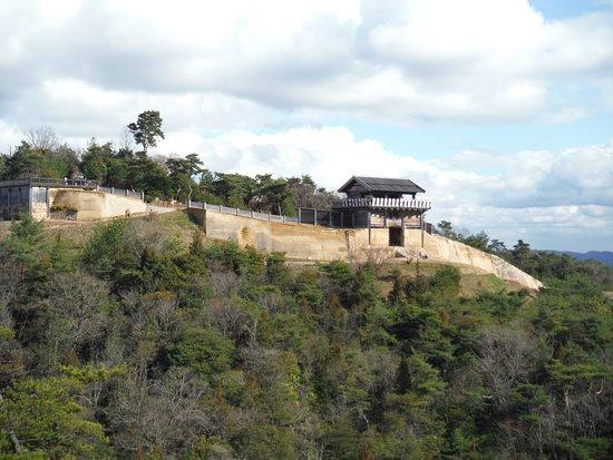 Kinojo Castle