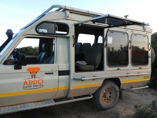 Addo Game Drives