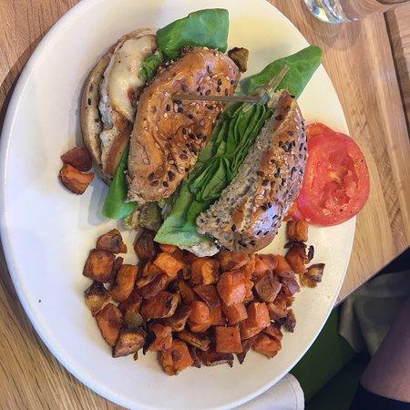 True Food Kitchen The Woodlands Restaurant Reviews Phone Number