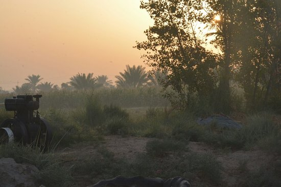 Kut, Irak: الكوت -تصويري سجاد هازارد