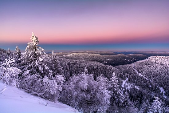 Black Forest, ألمانيا: 'Twas the night before Christmas, when all through the Black Forest not a creature was stirring, not even a curious tourist.