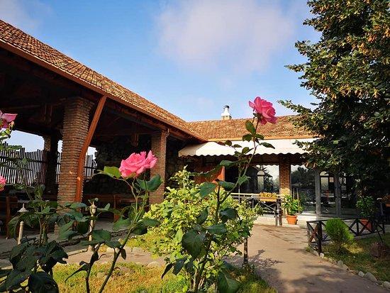с.Натахтари, Грузия: Sunny yard of our restaurant
