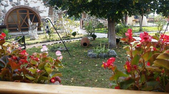 с.Натахтари, Грузия: Our yard