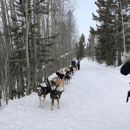 Continental Divide Trail Resmi