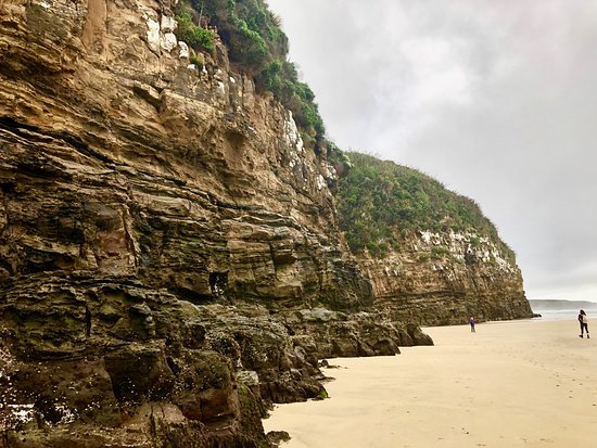 Southland Region, New Zealand: The beautiful walk to the caves.