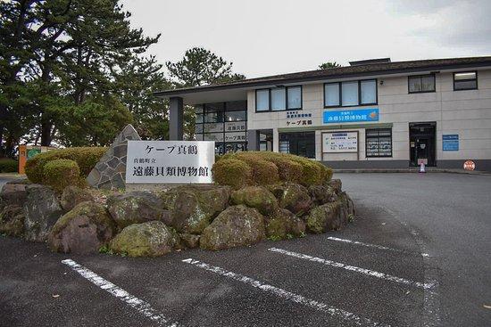 Manazuru Peninsula Foto
