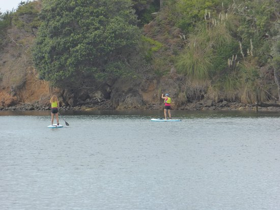 Great Barrier Island, New Zealand: Paddleboarding just out in front to Paddle & Saddles