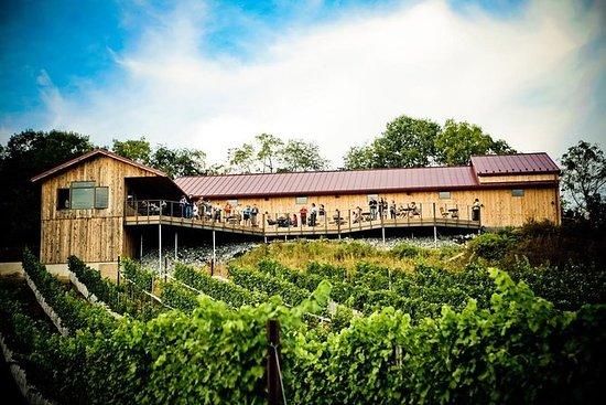 Private VIP-Weintour mit Mittagessen...