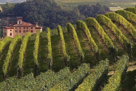 Privétour: Piemontese wijnproeverij ...