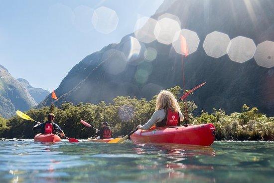 Bootstour auf dem Milford Sound und...