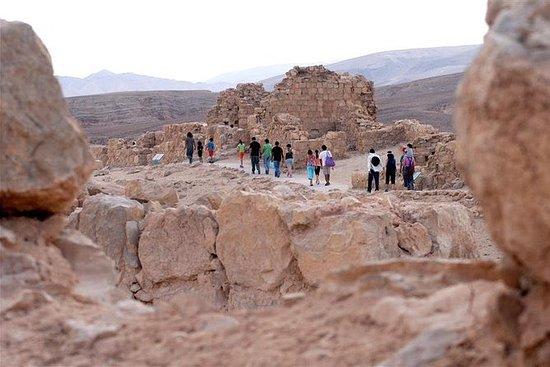 Viaggio di un giorno a Masada e nel