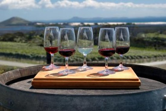 Niagara Falls Weintour mit Käseplatte