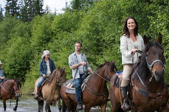 Bariloche Horseback Riding Tour with...
