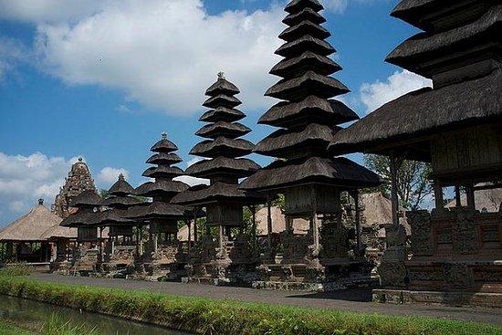 Tour del cuore di Bali: Tempio Taman