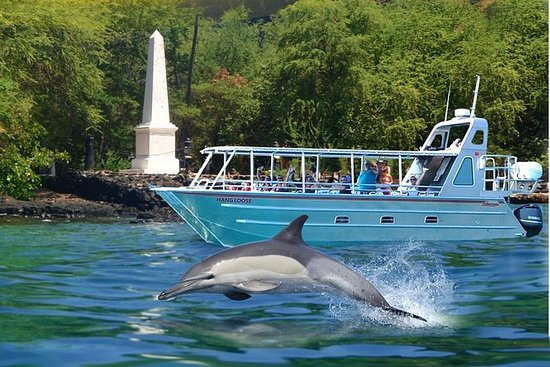 COMBO: Kealakekua Bay and Wild...