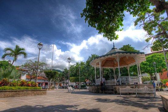 Privat tur: Puerto Vallarta City...