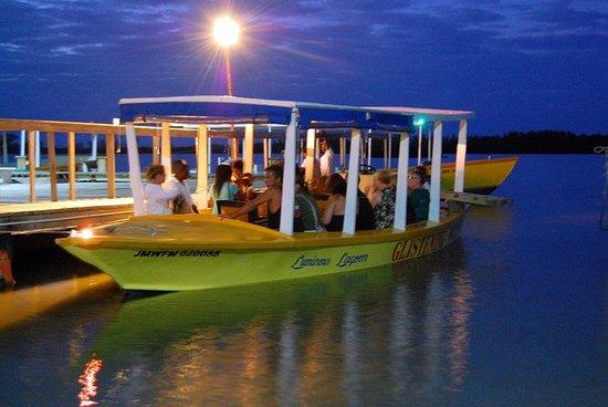 Luminous Lagoon Tour from Montego Bay...