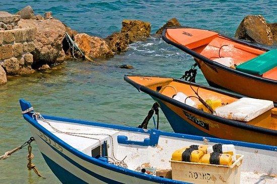 Tour Privado: Excursão Caesarea Haifa...