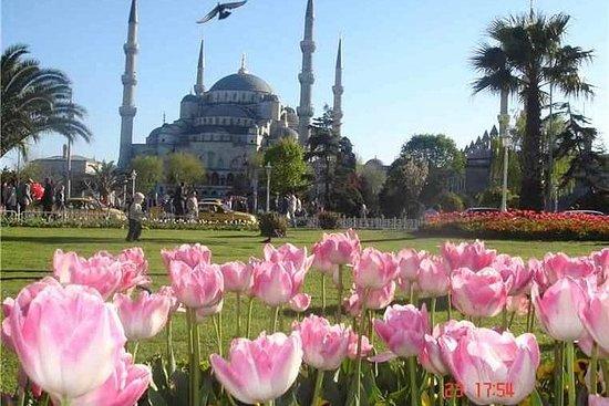 Excursão a pé de 3 horas em Istambul...