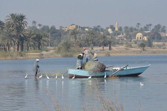 カイロからのFayoumとWadi El Rayanへのプライベートツアー