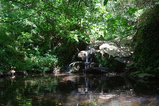 Montseny Guided Hiking Tour from...