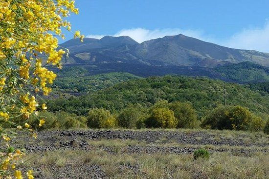 Mount Etna Nature and Flavors...